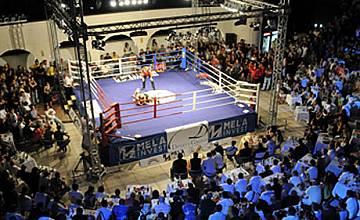 Свободни боеве по РИНГ през 2009-а