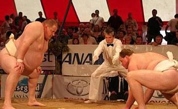 Международният турнир по сумо в София, само по РИНГ