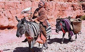 Али Баба и четиридесетте разбойници | Ali Baba et les 40 voleurs (2007)