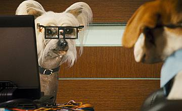 Котки и кучета: Отмъщението на Кити 3D / Cats & Dogs:The revenge of Kitty Galore 3D- премиера 13 август