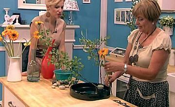 """Филип Аврамов в """"Часът на мама"""" – петък, 2 ноември от 14:00 часа по bTV Lady"""