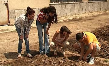 Кандидат-фермерки копаят с официални рокли