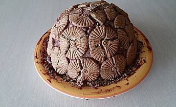 Къци Вапцаров си направи торта от диня за ЧРД