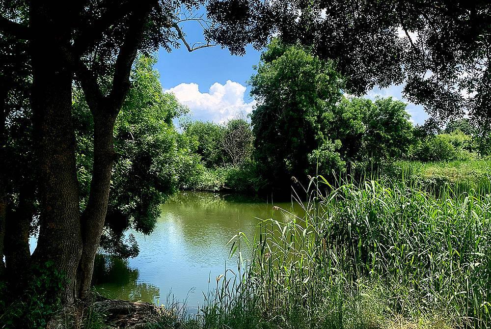 Дивата река