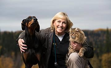 Д-р Дий: ветеринар в Аляска