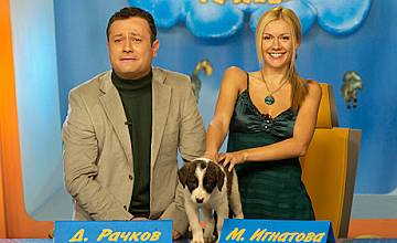 """""""Господари на ефира"""" обявяват кастинг за куче"""