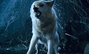 """Без дракони, но със  Старк и бели бродници в предисторията на """"Играта на тронове"""""""
