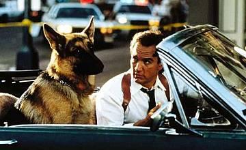 К-9: Частен детектив | K-9: P.I. (2002)