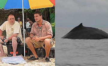 Любо Нейков пристигна с  десетки китове в Survivor: Островите на перлите