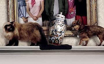 Запознай ме с вашите | Meet the Fockers (2004)