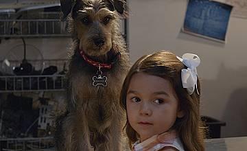 Робо-куче | Robo-Dog (2015)