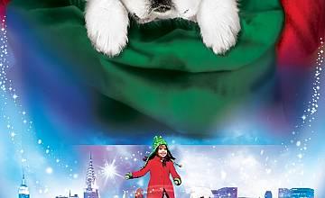Търсенето на Дядо Коледа и Лапичка |  The Search for Santa Paws (2010)