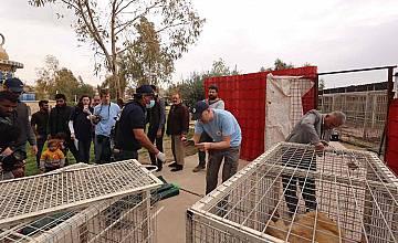 bTV Репортерите за съдбата на Копривщица и последните оцелели животни от зоопарка в Мосул
