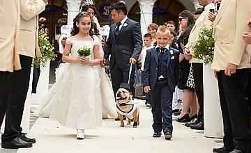 Какво означава да се венчаеш в Южна Италия